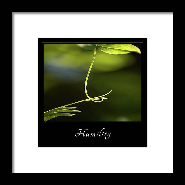Inspiration Framed Print featuring the photograph Humility 2 by Mary Jo Allen