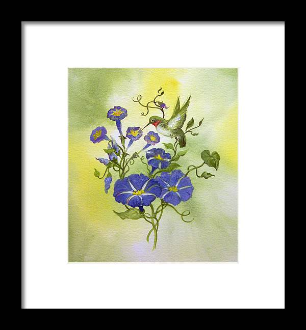 Hummingbird;bird;morning Glories;flowers;watercolor Painting; Framed Print featuring the painting Hummingbird in the Morning by Lois Mountz
