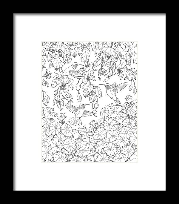 Hummingbirds And Flowers Coloring Page Framed Print