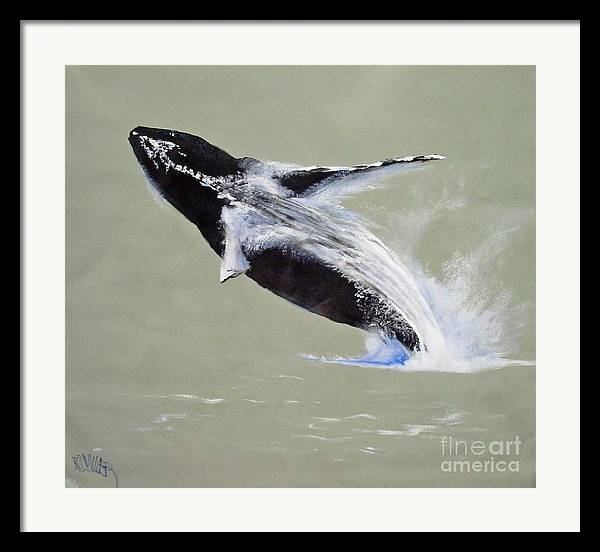 Kihei Framed Print featuring the painting Humpback Off Kihei Maui by Paul Miller