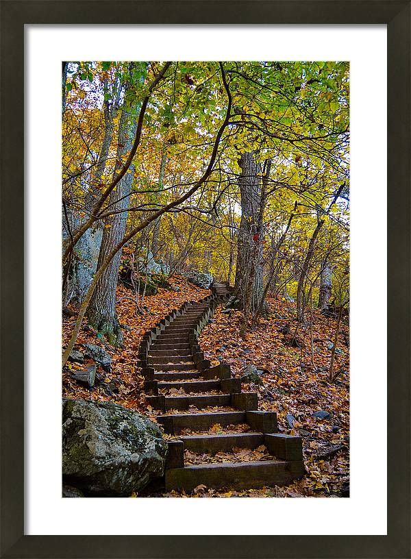 Humpback Rock Trail by Aaron Dishner