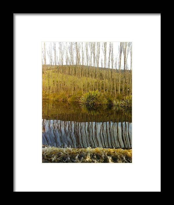River Reflections Trees Poplars Landscape Framed Print featuring the photograph Huon Poplars by Bethwyn Mills