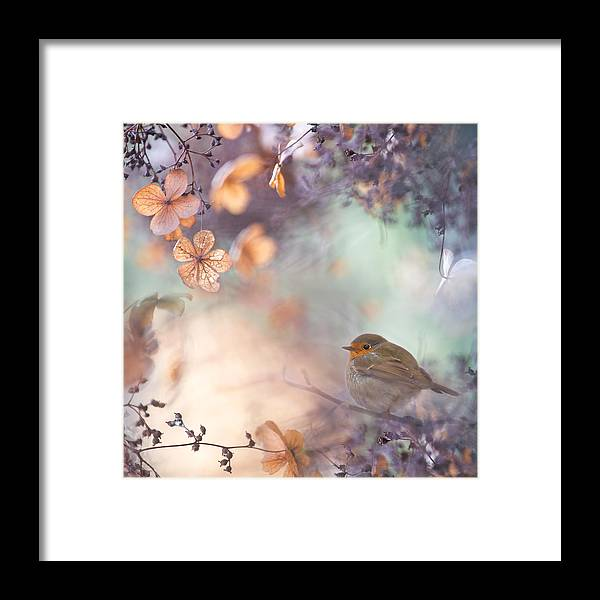 Fantasy Framed Print featuring the photograph Hydrangea Fantasy by Teuni