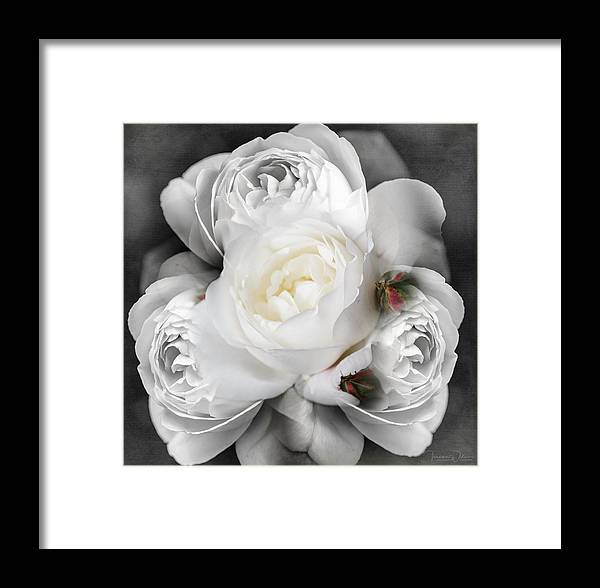 Alnwick Framed Print featuring the photograph I Do - Love You by Teresa Wilson