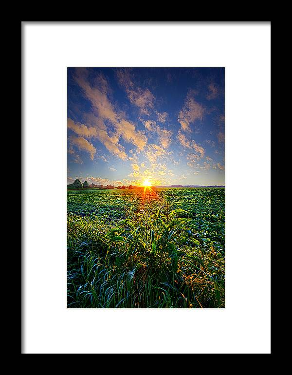 Spring Framed Print featuring the photograph I Don't Live To Be by Phil Koch