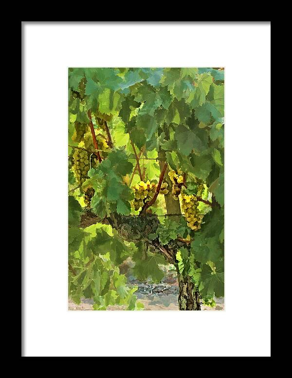 Grapes Framed Print featuring the digital art I Heard It On The Grapevine by Patricia Stalter