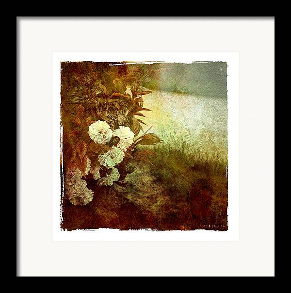 Flowers Framed Print featuring the photograph I Still Love You by Inesa Kayuta