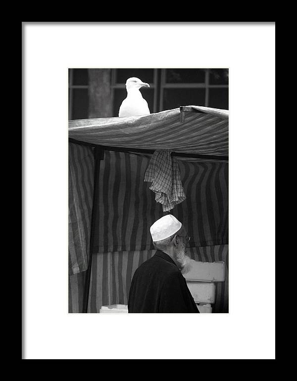 Hat Framed Print featuring the photograph I Want That Hat by Jez C Self