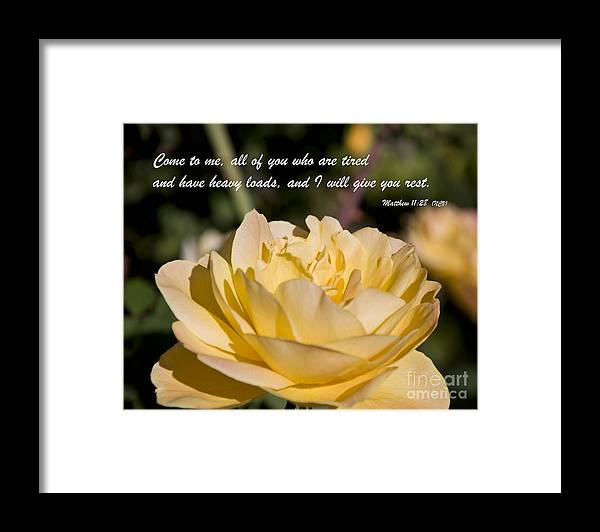 Bible Framed Print featuring the photograph I Will Give You Rest by Kirt Tisdale