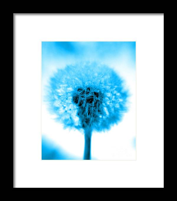 Blue Framed Print featuring the photograph I Wish In Turquoise by Valerie Fuqua