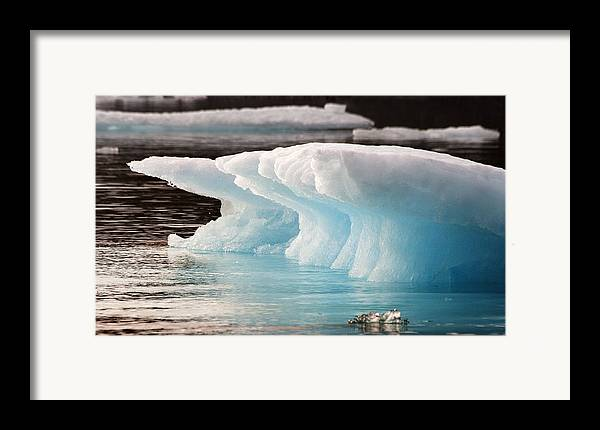 Iceberg Framed Print featuring the photograph Ice Bears by Elisabeth Van Eyken