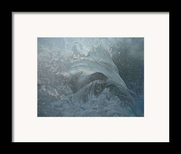 Nature Framed Print featuring the photograph Ice Crystals 1 by Eric Workman