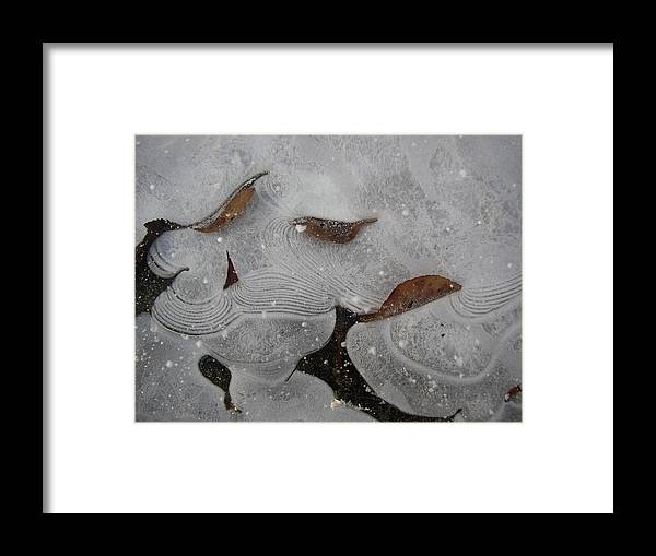 Nature Framed Print featuring the photograph Ice Designs by Jeff Sattler