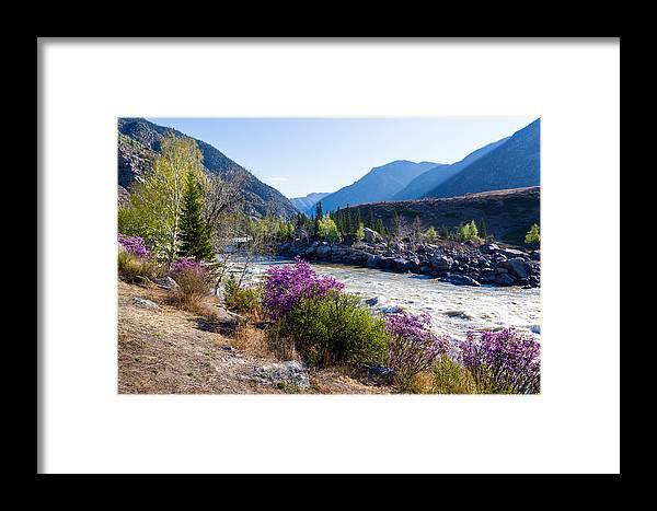Ilgumensky Rapids Framed Print featuring the photograph Ilgumensky Rapids At Spring Time. Altay Mountains by Victor Kovchin