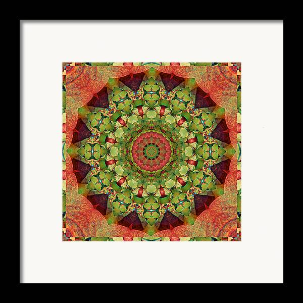 Mandalas Framed Print featuring the photograph Illumination by Bell And Todd