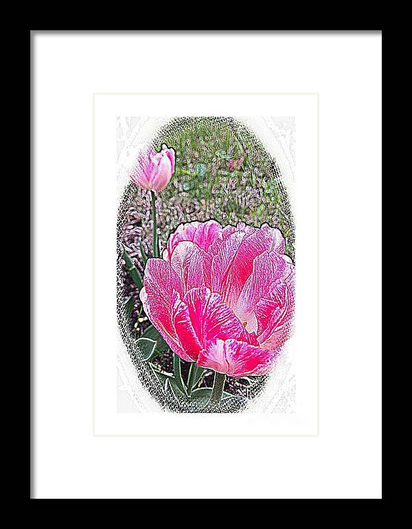 Illustrated Rose Vignette Framed Print featuring the photograph Illustrated Rose Vignette by Barbara Griffin