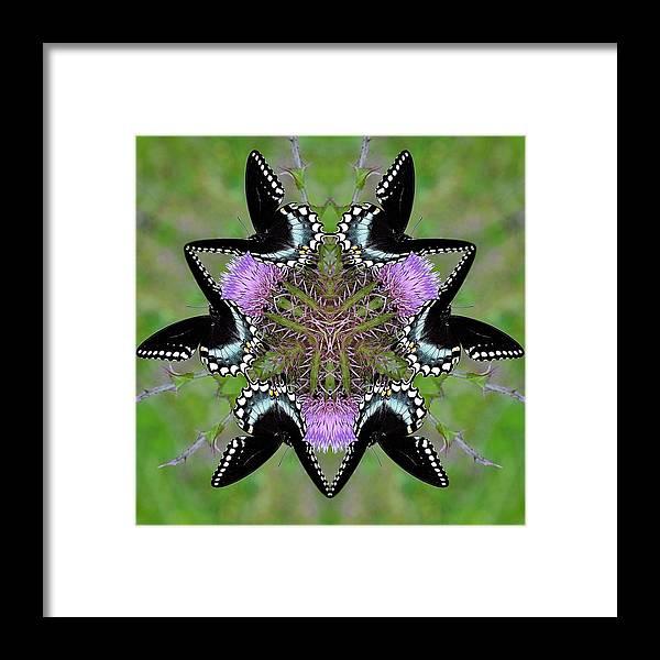 Framed Print featuring the digital art Im So Pretty by Katrina Johns