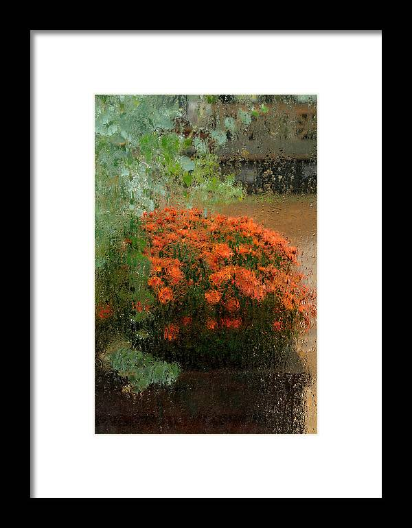 Mum Framed Print featuring the photograph Impressionistic Mums by Don Schroder