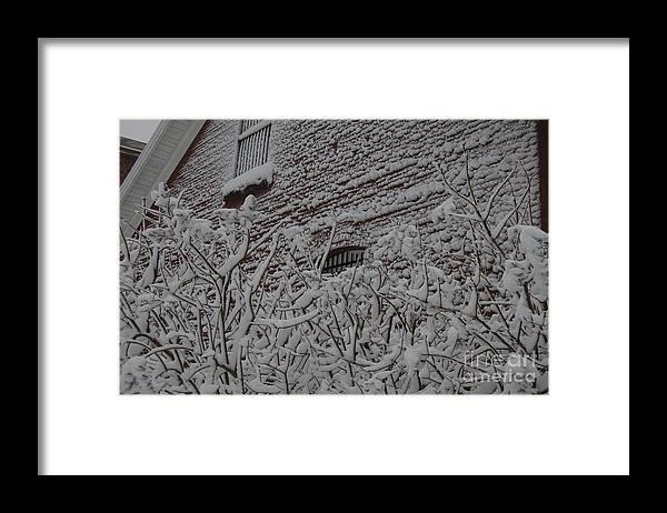 Brick Framed Print featuring the photograph Imprisoned by Faith Harron Boudreau