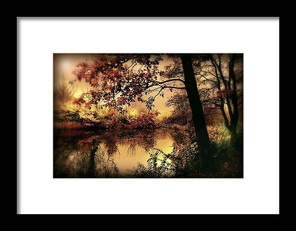 Autumn Framed Print featuring the photograph In Dreams by Jacky Gerritsen