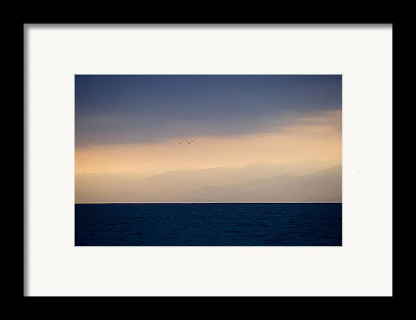Ocean Framed Print featuring the photograph In Flight by Brad Rickerby