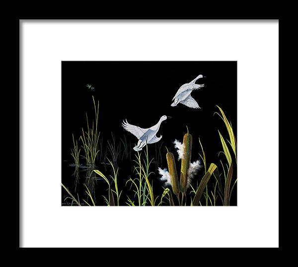 Birds Framed Print featuring the painting In Flight by Don Griffiths