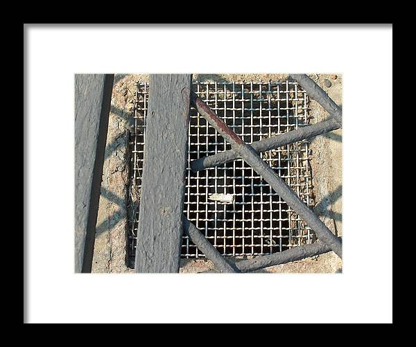 Chicago Framed Print featuring the photograph In Grates by Jacob Stempky