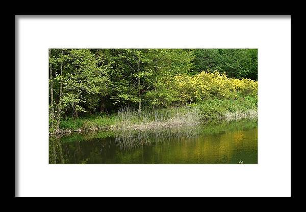 Spring Framed Print featuring the photograph In Peace With Nature by Attila Balazs
