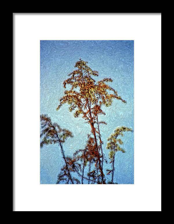 Weed Framed Print featuring the photograph In Praise Of Weeds II by Steve Harrington