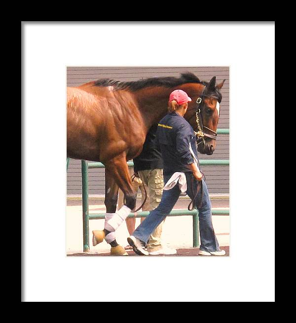 Jockey Framed Print featuring the photograph In Step by Ian MacDonald