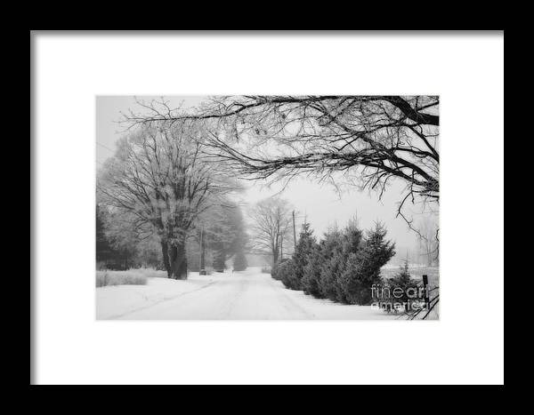 Country Framed Print featuring the photograph In The Country by Cathy Beharriell
