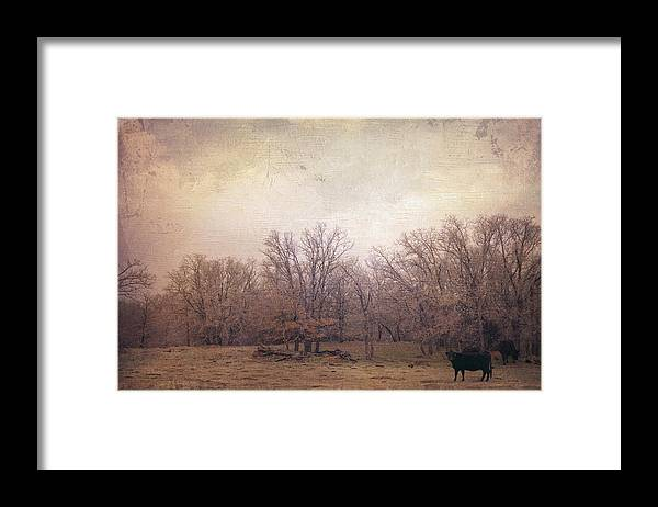 Landscape Framed Print featuring the photograph In the field by Toni Hopper