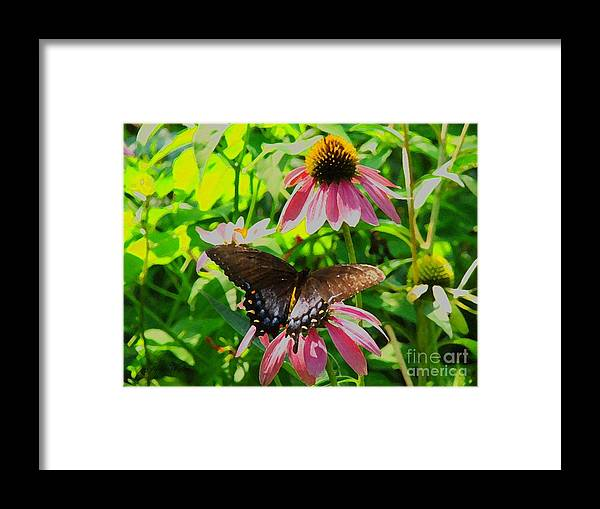 Butterfly Framed Print featuring the photograph In The Upper Garden - One by Judy Waller