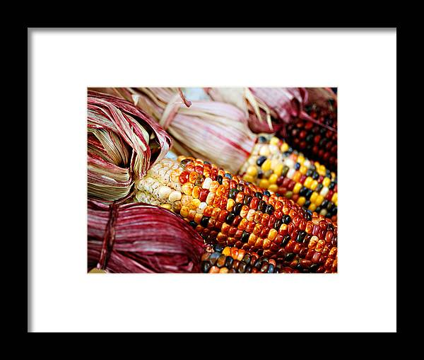 Corn Framed Print featuring the photograph Indian Corn by Marilyn Hunt