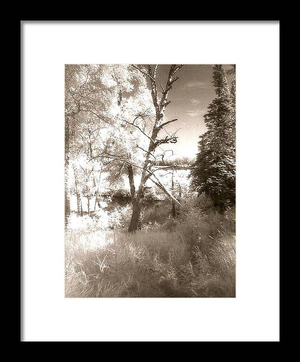 Photograph Framed Print featuring the photograph Infrared Landscape by Patricia Bigelow