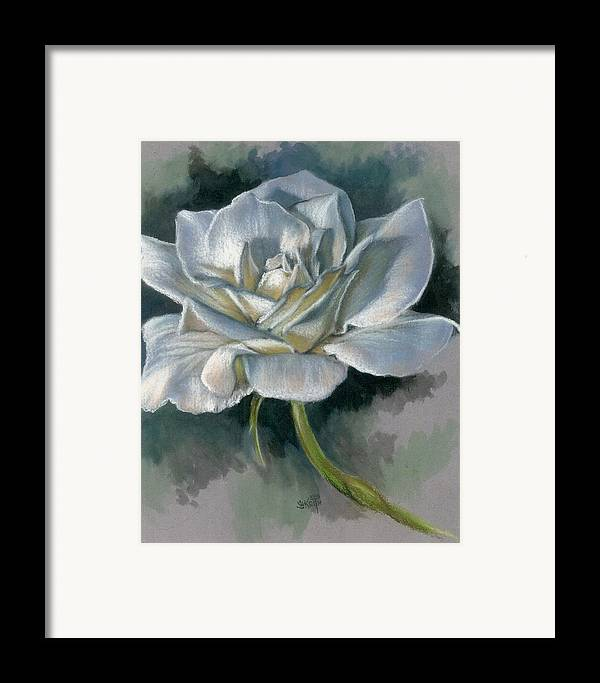 Rose Framed Print featuring the mixed media Innocence by Barbara Keith