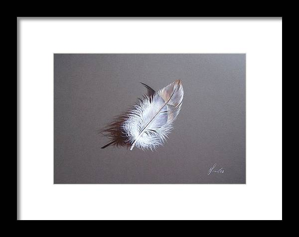 Feather Framed Print featuring the drawing Innocence by Elena Kolotusha
