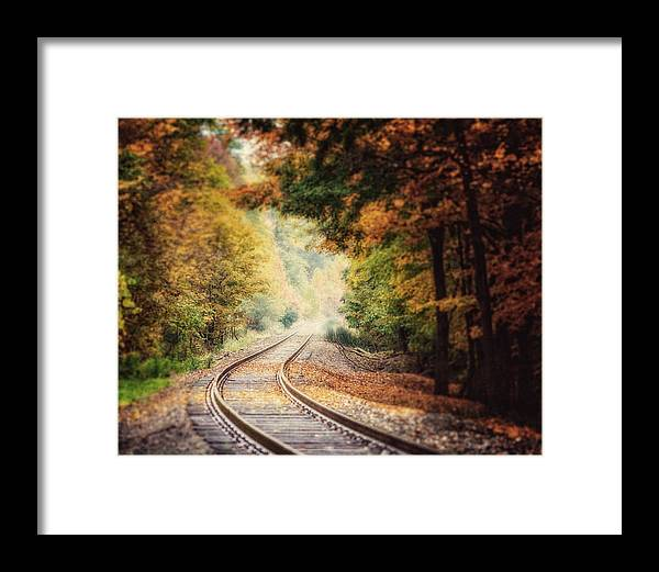 Landscape Framed Print featuring the photograph Into The Fog by Lisa Russo