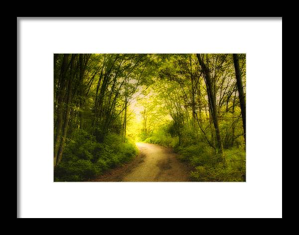 Back Roads Framed Print featuring the photograph Into The Light by Diane Smith