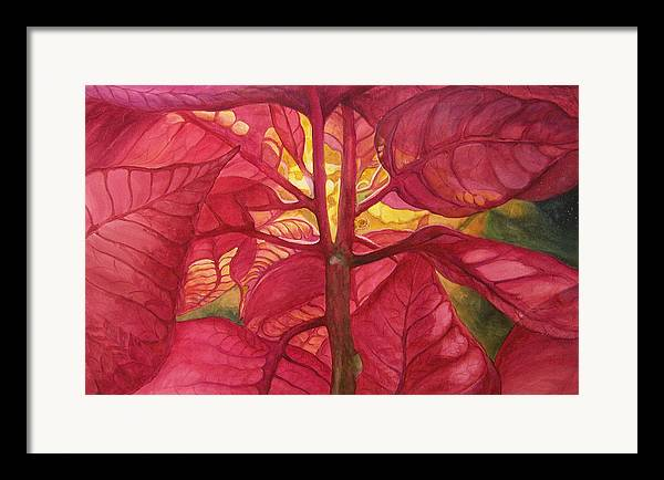 Floral;watercolor Floral;poinsettia;conceptual;poinsettias;christmas;holiday;flower;flowers;plant; Framed Print featuring the painting Into The Light by Lois Mountz
