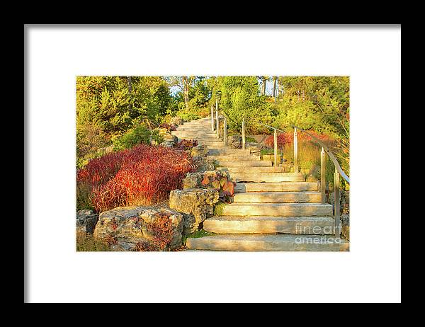 Gardens Framed Print featuring the photograph Invitation to Autumn by Marilyn Cornwell