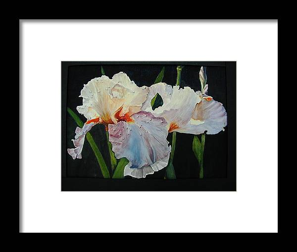 Flowers Framed Print featuring the painting Iris by Dwight Williams