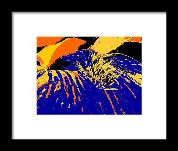 Flower Framed Print featuring the photograph Iris by Ian MacDonald