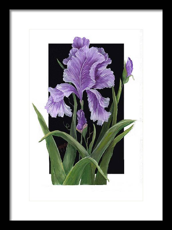 Paining Framed Print featuring the painting Iris One by Marveta Foutch