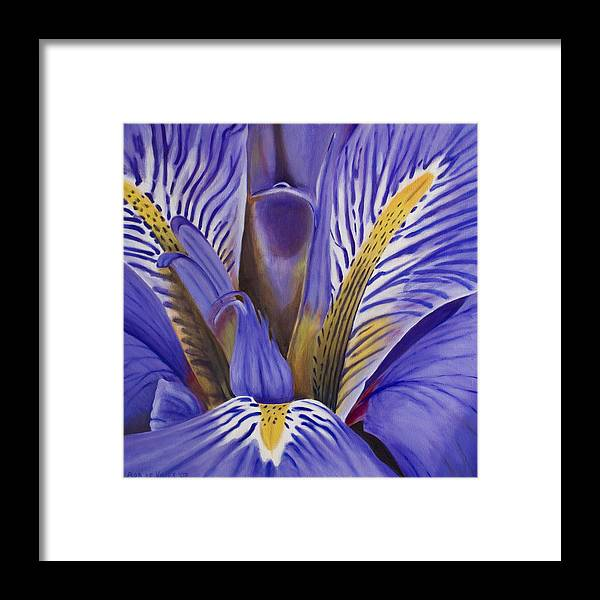 Flower Framed Print featuring the painting Iris by Rob De Vries
