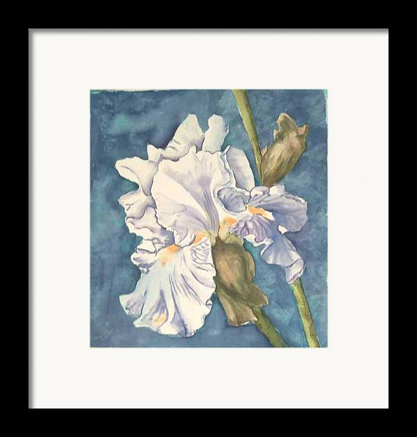 Watercolor Framed Print featuring the painting Iris Twenty One by Diane Ziemski
