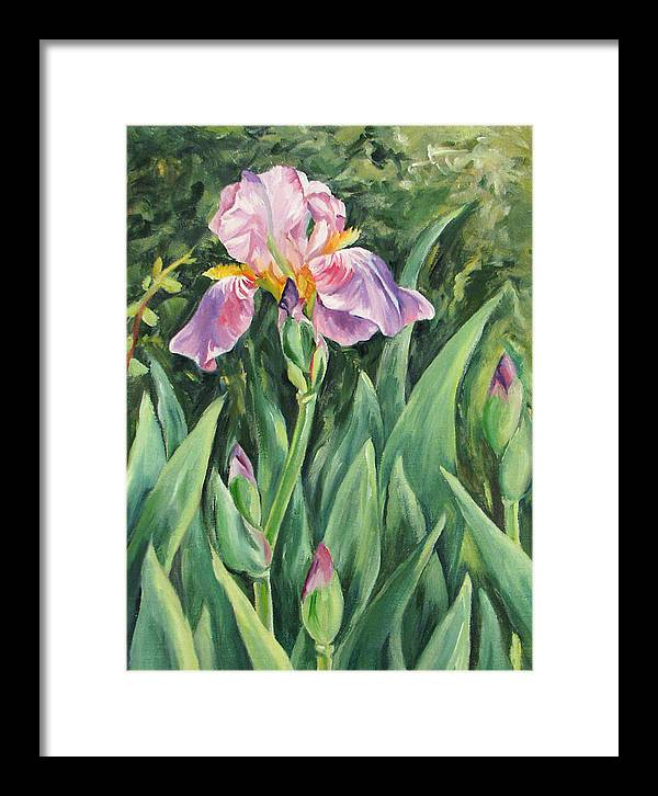Irises Framed Print featuring the painting Irises by Cheryl Pass