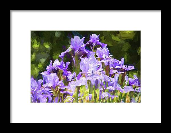 Alicegipsonphotographs Framed Print featuring the photograph Irises For Mama by Alice Gipson