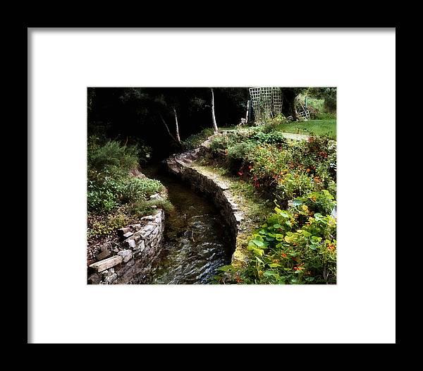 Ireland Framed Print featuring the photograph Irish Garden Stream by Joe Bonita
