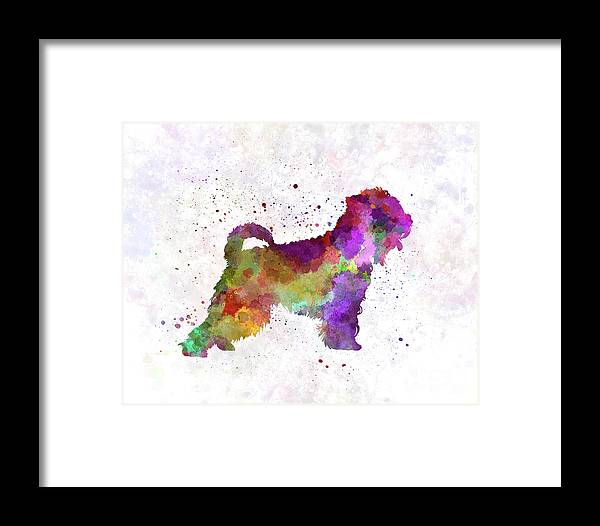 Irish Soft Coated Wheaten Terrier In Watercolor Framed Print by ...